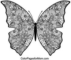 advanced coloring pages for adults butterfly coloring page