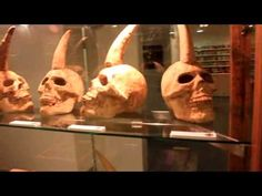 The show case for the One-Horned Human project - part1 - YouTube