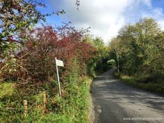 Exploring Donegal's country roads Walking in Ireland Wild Library blog