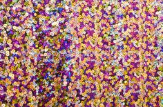 Black purple multi colored stretch fabric http://www.pinterest.com/thebellydancer/fancy-costume-fabrics/
