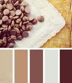 cocoa chocolate beige colours for the living room