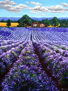 Lavender Summer II - 48x36 - Lavender Field Painting of Provence France, Contemporary Lavender Art