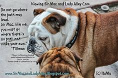 This was made by @SirMacLAdyAlley at #BlogPaws pic.twitter.com/jgvA2szb