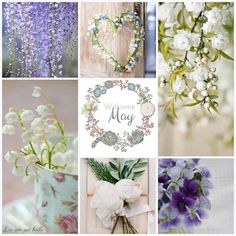 May collage inspiration mood board Beautiful Collage, Beautiful Flowers, Collages, Neuer Monat, Welcome May, Pot Pourri, Mood Colors, Color Collage, Photo Images