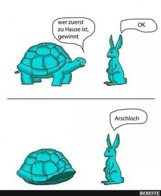 Schlaue Schildkröte | Lustige Bilder, Sprüche, Witze, echt lustig