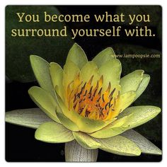 You become what you surround yourself with.