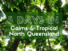 Tropical North Queensland is paradise and Cairns is the first stop. The Great Barrier Reef and tropical rainforests are right on your doorstep.