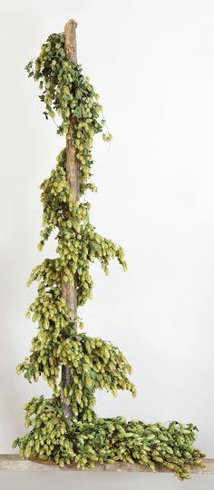 Artificial hops vine garland 30in vines sprays and garlands for Artificial hops decoration