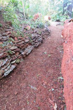 The Evolution of a Garden Stepping Stones, Evolution, Garden, Outdoor Decor, Nature, Stair Risers, Garten, Naturaleza, Lawn And Garden