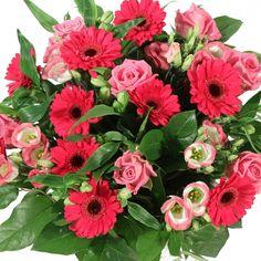 bloemen   Cash en Carry BLOEMEN Leopoldsburg