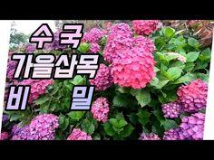 Gardening, Decor, Gardens, Decoration, Lawn And Garden, Decorating, Horticulture, Deco