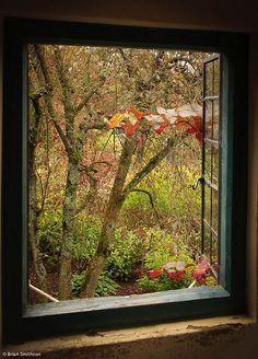 A garden view by Brian Smithson (Old Geordie) on Flickr. @kendrasmiles4u