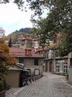 Autumn in Metsovo, a pittoresque village on the slopes of #Pindos at an altitude of 1.156 m, #Greece