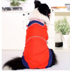 Red Pet Poncho Rain Slicker Raincoat for Large Dogs *** Check this awesome product by going to the link at the image. (This is an affiliate link and I receive a commission for the sales) Rain Slicker, Dog Coats, Large Dogs, Cold Weather, Image Link, Raincoat, Pets, Awesome, Check