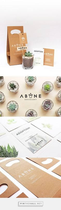 Visual Branding - Home & Garden ABANE Succulent Visual Branding by Nevi Ayu Enviarni. Pin curated byABANE Succulent Visual Branding by Nevi Ayu Enviarni. Pin curated by Packaging Design Inspiration, Graphic Design Inspiration, Typography Design, Logo Design, Brochure Design, Design Design, Identity Design, Identity Branding, Visual Identity