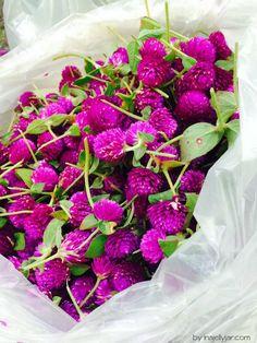 Duftig: Flower Market im Chinatown-Viertel Bangkoks, Thailand