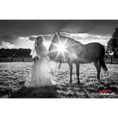 #cloudporn #canon #canon_official #canon_photos #ig_mood #ig_today #igworldclub #ig_europe #ig_masterpiece #ig_global_life #ig_photooftheday #beautiful #fotocatchers #mood_family #myphototime #nature #nofilter #perfect #photografer #photooftheday #shotoftheday #throughmyeyes #horse #bw_wednesday #challenge