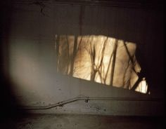 mpdrolet: From Sylavania Anna Beeke Light Photography, Color Photography, Dappled Light, Shadow Play, Chiaroscuro, Going Home, Light And Shadow, Light Shades, Lights
