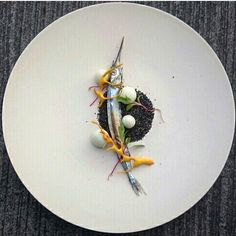 Sous vide blistered halfbeak, black oats and grains, fennel spheres, saffron crackling