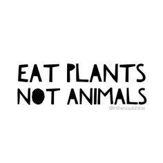 Yes, no animals need to die in order for people to eat. Do the research and go vegan. Vegan Facts, Vegan Memes, Vegan Quotes, Vegetarian Quotes, Reasons To Be Vegan, Vegetarian Lifestyle, Why Vegan, Vegan Animals, Going Vegan