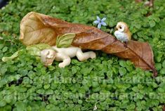 This fairy baby wears a green leaf cap and is sleeping sweetly under a woodland leaf as a tiny owl watches over him. Collect all of the fairy babies! Miniature Fairy Figurines, Miniature Fairy Gardens, Baby Fairy, Love Fairy, Arts And Crafts House, Arts And Crafts Projects, Baby Crafts, Fun Crafts, Amazing Crafts