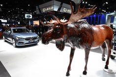 Does anyone know the history behind the moose and Volvo? #SteelMattersLAAS #LAAutoShowSBC #LAAutoShow
