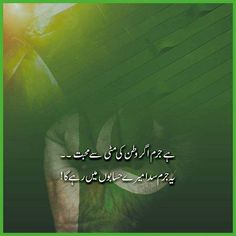 Top 30 Pakistan Independence Day Quotes at Cool Whatsapp Status Pak Independence Day, Pakistan Independence Day Quotes, Happy Independence Day Wishes, Independence Day Pictures, Pakistan Defence, Pakistan Army, 23 March Pics, 6 September, Poetry About Pakistan