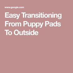 Easy Transitioning From Puppy Pads To Outside