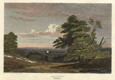 London, Hornsey, 1811