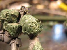 Simon Schnitzler uploaded this image to 'Mantis Warriors'.  See the album on Photobucket.