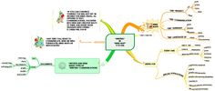 WRITING IN MIND MAP 4 TO 400