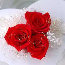 レッド ローズ - Google 検索 Rose, Google, Flowers, Plants, Pink, Roses, Flora, Plant, Royal Icing Flowers