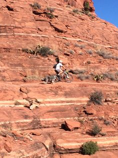 Husband and dog riding Teacup trail in Sedona