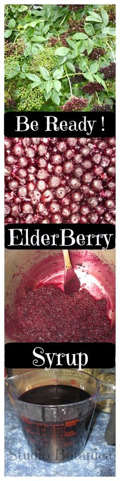 Learn how Elderberry syrup can help your family + easy DIY instructions + resources to make your own!