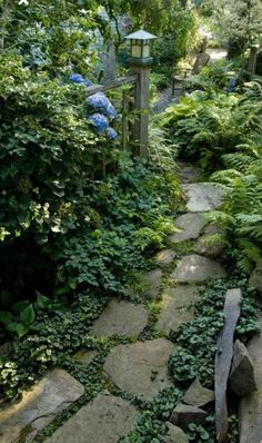 Path Ideas to Mesmerize Your Garden Walkway Beautify your unused wooded area and large trees by transforming them into a wonderful woodland garden.Beautify your unused wooded area and large trees by transforming them into a wonderful woodland garden. Path Design, Landscape Design, Design Ideas, Design Design, Jardim Natural, Path Ideas, Walkway Ideas, Woodland Garden, Natural Garden
