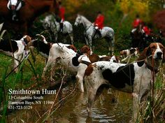 Wonderful friends and sport. Smithtown hunt