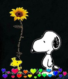 Snoopy and Woodstock Snoopy Images, Snoopy Pictures, Peanuts Cartoon, Peanuts Snoopy, Peanuts Characters, Cartoon Characters, Charlie Brown Und Snoopy, Snoopy Und Woodstock, Snoopy Wallpaper