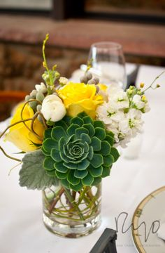 Modern centerpiece featuring a large succulent, dusty miller, tulips, roses, stock and curly willow loop accents by Plum Sage Flowers. Reception at The Flagstaff House, Boulder. Photograph by Ryan Olsen Photography.