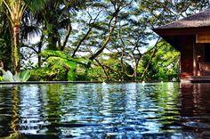 Como Shambhala Estate, Ubud, Bali Ubud, Bali, Hotels, Tropical, Modern, Travel, Voyage, Viajes, Traveling