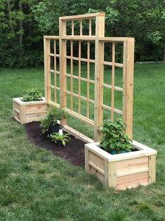 Garden Yard Ideas, Garden Boxes, Lawn And Garden, Garden Projects, Fence Ideas, Privacy Landscaping, Backyard Privacy, Privacy Fences, Privacy Trellis