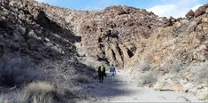 This Nevada Canyon Is The Coolest Thing You'll Ever See For Free Las Vegas Valley, Las Vegas Nevada, Hiking Places, Hiking Trails, Nevada Desert, Valley Of Fire, Adventure Activities, Art Sites, Natural Wonders