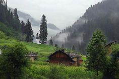 Do Repin & share this beautiful shot of Pahalgam in Kashmir. http://www.tourmyindia.com/states/jammu-kashmir/pahalgam.html #travelIndia #imageoftheweek #Kashmir