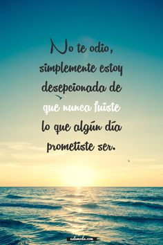 I dont hate you,i'm just dissapointed that you were not the type of person that you promise to be. Wisdom Quotes, True Quotes, Book Quotes, Qoutes, Spanish Memes, Spanish Quotes, Spanish Inspirational Quotes, Quotes En Espanol, Motivational Phrases