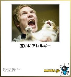 People are allergic to cats. Cats are allergic to people.