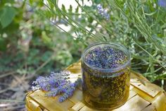 We have the perfect homemade gift for you this Christmas, Homemade Lavender Oil. It's a fantastic gift for that special person in your life. All you'll need is olive oil, fresh lavender and a canning jar. Flavored Oils, Infused Oils, Diy Beauté, Christmas Gifts To Make, Christmas Ideas, E 500, Turmeric Curcumin, Herbal Oil, Healing Herbs