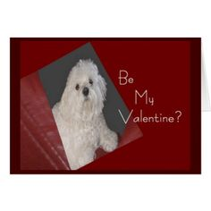 Maltese Be My Valentine Card for Anyone - Saint Valentine's Day gift idea couple love girlfriend boyfriend design