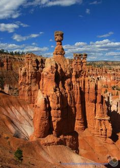 51 Cent Adventures: Bryce Canyon National Park - Day Trip Ideas I've visited Bryce Canyon twice in my life and both times I feel like I did it wrong. Here's how you should go sightseeing in Bryce Canyon. Bryce National Park, Capitol Reef National Park, Us National Parks, Bryce Canyon, Canyon Utah, New Orleans, New York, Photo Usa, Utah Parks