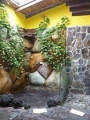 Indoor Waterfall= Coolest Shower Ever!