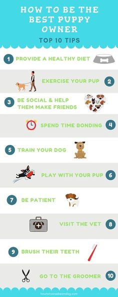 If you want to be the best puppy owner on the block there are a few things that can really set you apart from the rest! Click to get the top ten tips to become the best puppy owner. These dog owner tips are great for first time dog parents or veteran pet