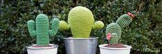 ElsHaakt - Drie nieuwe gehaakte cactussen! Binnenkort zijn de patronen beschikbaar.